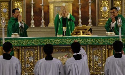 Bishops' plenary meeting enters second day