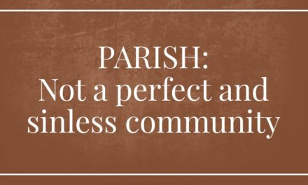 Parish: Not a perfect and sinless community