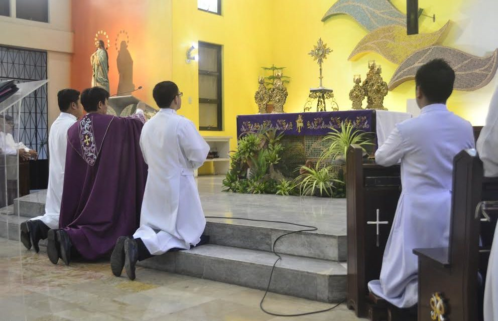 Clergy, seminarians reminded: Be 'life advocates'