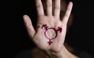 Paraguay's government rejects gender ideology