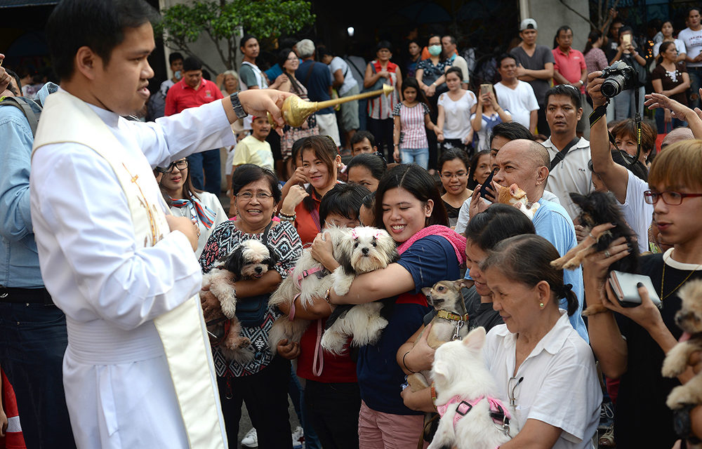 Blessing of pets