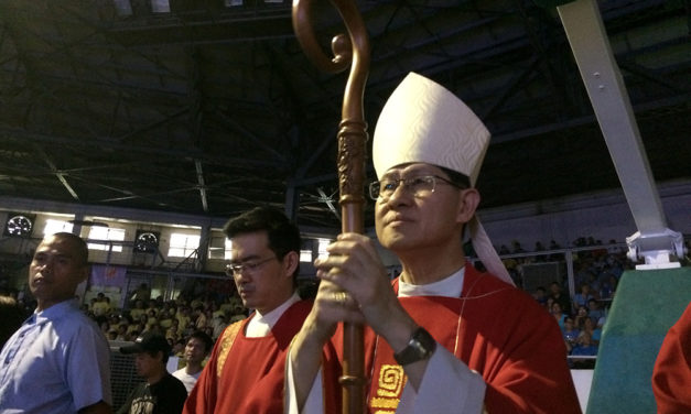 Cardinal Tagle urges lay people to work for more vocations
