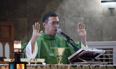 Pope names new bishop of Iba
