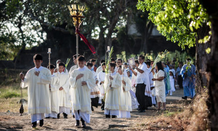 LOOK: Catholics mark Palm Sunday as Holy Week begins