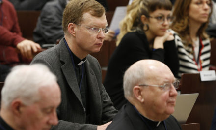 Abuse expert: Crisis is call to new vision of priesthood, accountability