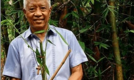 Wanted: 200k youth to save Marikina Watershed