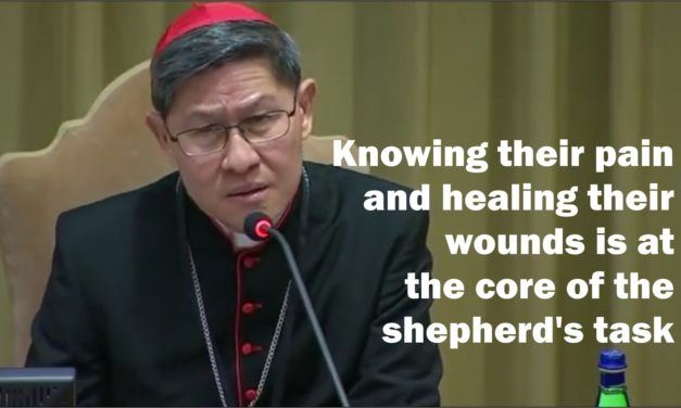 The Smell of the Sheep: Knowing their pain and healing their wounds is at the core of the shepherd's task   By Luis Antonio G. Cardinal Tagle