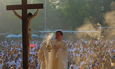 Society needs good hands, says Cardinal Tagle