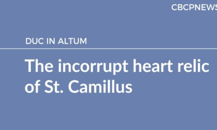 The incorrupt heart relic of St. Camillus