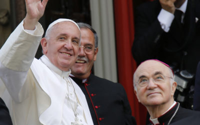 Pope Francis denies knowing of allegations against McCarrick