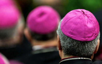 Pope Francis: Bishops who do not know their priests weaken the Church