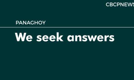 We seek answers