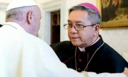 Peace advocate bishop to head Church's social justice arm