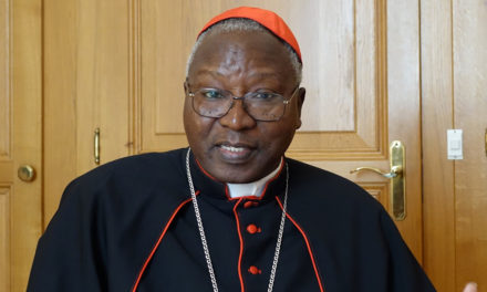 Cardinal Ouédraogo elected president of African bishops' conference