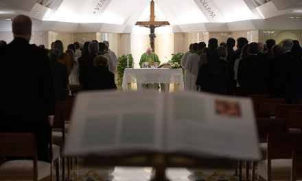 Priesthood is a gift, not a job, pope says
