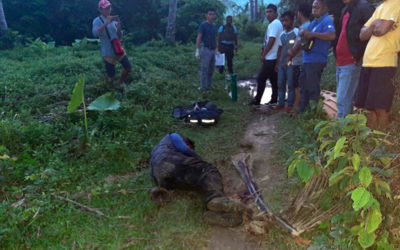 Palawan prelate decries killing of forest ranger