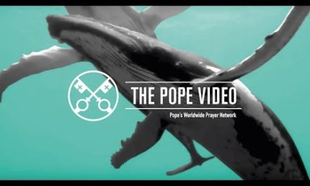 Pope's September prayer intention: For protecting the oceans