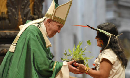 Pope Francis decries 'predatory models of development' in Amazon synod closing Mass