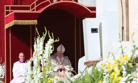 Surgeon and father among sainthood causes moving forward