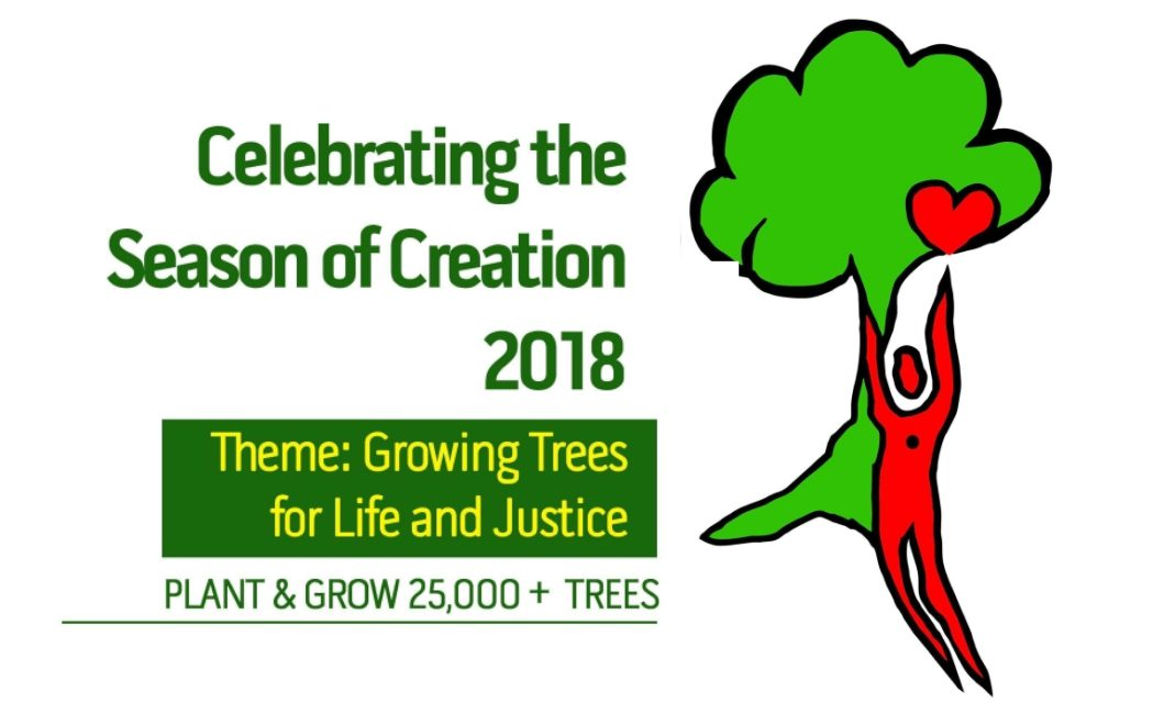 """""""WALKING TOGETHER"""" Growing Trees for Life and Justice"""
