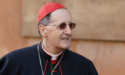 Laity must have role in fighting clericalism, Vatican official says