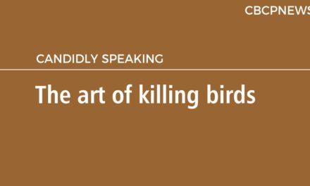 The art of killing birds
