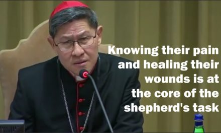 The smell of the sheep: Knowing their pain and healing their wounds is at the core of the shepherd's task | By Cardinal Luis Antonio Tagle