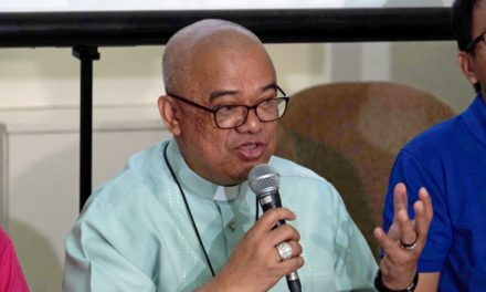Bishop denounces another murder of rights worker in Negros