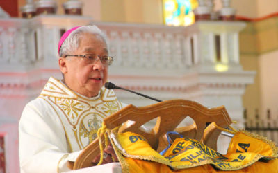 Bicol archbishop offers ways to live out 'Laudato Si'