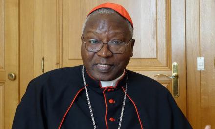 Cardinal Ouédraogo elected president of African bishops' conference