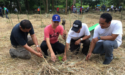 Palawan diocese marks Season of Creation with tree planting