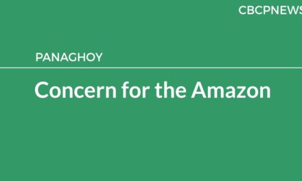 Concern for the Amazon