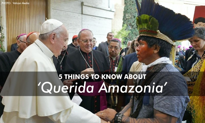 5 things to know about 'Querida Amazonia'