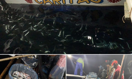In Sorsogon, Church helps feed the needy with fish
