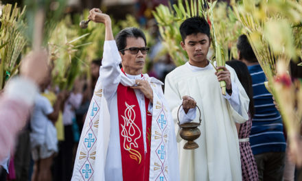 On Palm Sunday, priests urged to bless in the streets