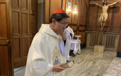 Cardinal Tagle, in new position, looks for lessons learned in lockdown