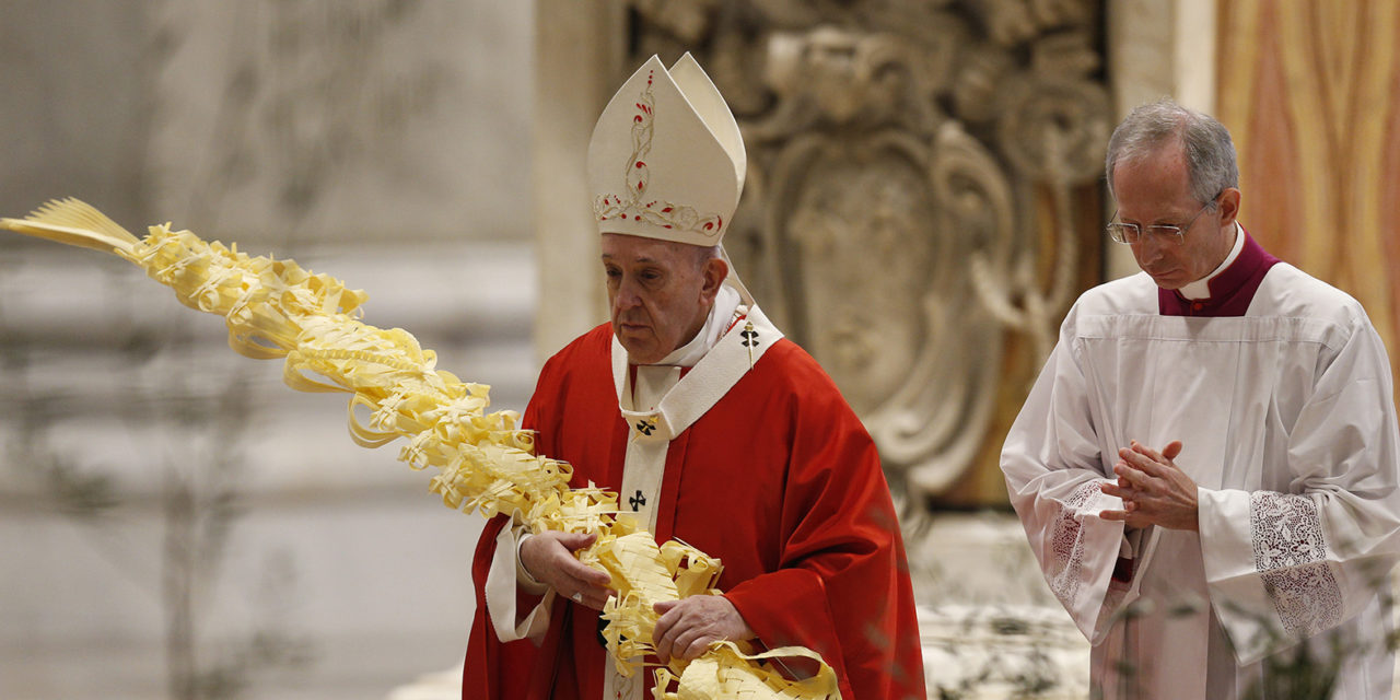 Full text: Pope Francis' homily for Palm Sunday