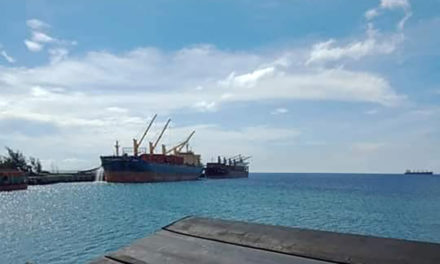 Antique diocese wants Chinese mining ships out of Semirara amid pandemic