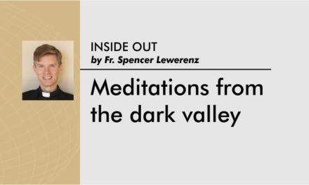Meditations from the dark valley