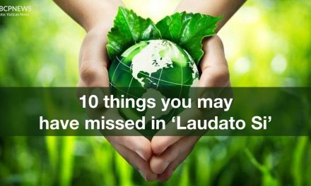 10 things you may have missed in 'Laudato Si'