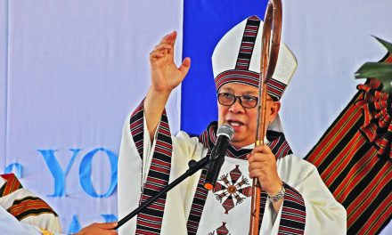 Baguio bishop hits 'mass killing' of trees