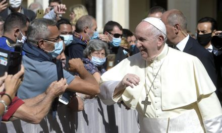 Pope Francis calls for solidarity at first audience with pilgrims after lockdown