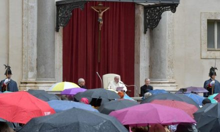 Pope Francis: Subsidiarity means everyone has a role in healing society