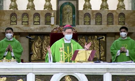 Cardinal Tagle calls for 'review of lifestyle' at end of Season of Creation