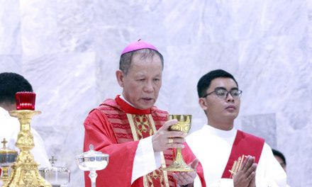 New Filipino cardinal astonished by appointment