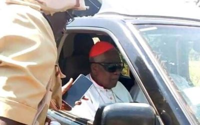 Cardinal is freed after kidnapping by gunmen in Cameroon