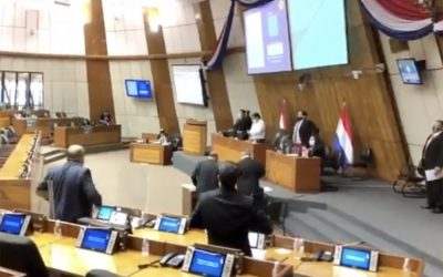 Paraguay's Congress responds to legalization of abortion in Argentina with a minute of silence