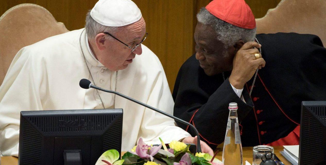 Vatican COVID-19 commission promotes vaccine access for the vulnerable