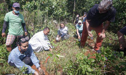 Parishioners plant trees to mark 500 years of Christianity in mining island Homonhon