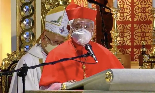 3 ways to celebrate the Jubilee year, according to a cardinal